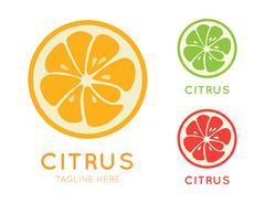 Kinds of citrus stylish icon. Juicy fruit logo Stock Illustration