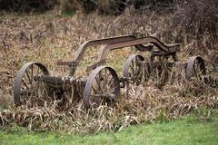 Stock Photo of Overgrown and Rusty Cart, Color Image, USA