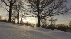 Snowy winter park Kuzminki Russia Moscow winter Stock Footage
