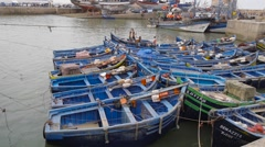 Blue boats in the harbor of Essaouira, Morocco Stock Footage