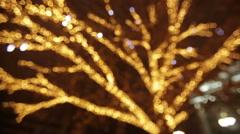 Bright Illumination on a tree at city Stock Footage