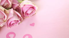 Stock Video Footage of Pink roses on pink background.