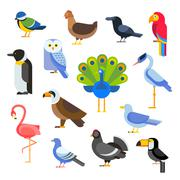 Birds vector set illustration. Egle, parrot, pigeon and toucan. Penguins Piirros