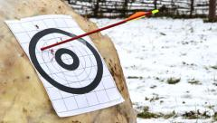 target and arrows - stock footage