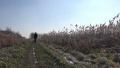 Man and dog walking outdoors on winter afternoon Stock Footage