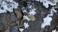 Some of the snowflakes on the rocks Stock Footage