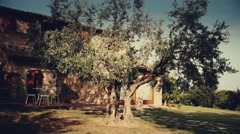 Country cottage in Tuscany with a big olive tree Stock Footage