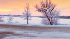 Moving into winter sunrise scenic, between snow frosted trees Stock Footage