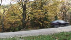 On a mountain road rush a black car. On the road are trees whose leaves are 1 Stock Footage