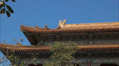Close up of the roof of the forbidden city, beijing Stock Footage
