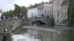White swans swimming near a bridge over Dijver Canal in Bruges Stock Footage