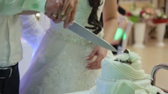 Detail of wedding cake cutting by newlyweds - stock footage