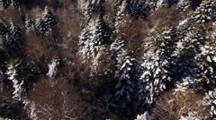 Aerial View Flight Above Winter Forest 20 Stock Footage