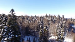 Aerial View Flight Above Winter Forest 22 Stock Footage