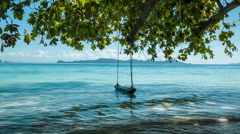 Green tree with lonely swing and sea Stock Footage