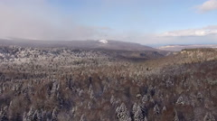 Aerial View Flight Above Winter Forest 27 Stock Footage