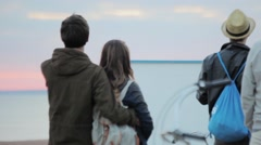 Back side group of people, watching sunset at the coast in summer evening Stock Footage