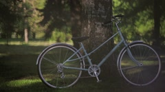 Blue bicycle stays at the tree in park in summer sunny evening. Pan horizontal Stock Footage