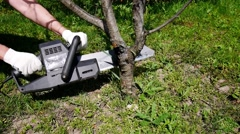Cut down of tree by electric saw Stock Footage
