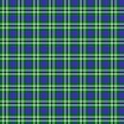 Tweedside District Hunting Tartan Stock Illustration