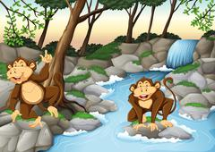 Two monkeys living by the waterfall Stock Illustration