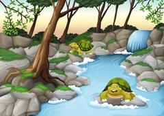 Two turtles living in the river - stock illustration