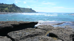 Landscape of Goat Island beach New Zealand Stock Footage