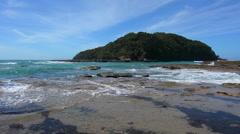 Landscape of Goat Island New Zealand Stock Footage