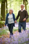 Senior Couple Walking Through Bluebell Wood - stock photo