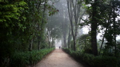 Magical majestic foggy path, forest, Quinta da Regaleira estate, Sintra Stock Footage