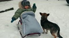 Urban snowfall . Homeless stray dogs with child toddler baby boy. Snow, snowfall Stock Footage