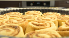 Point of view: cinnamon rolls being put into the hot oven. Stock Footage