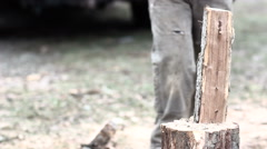 Wood Splitting 1 clean hit and axe left in stump - stock footage