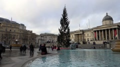 Christmas Tree in Trafalgar Square in London - stock footage