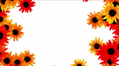 4k Sunflower wreath wedding background,flower plant bloom pattern,life vitality Stock Footage