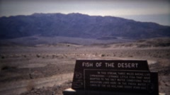 1971: Fish of the Desert sign and river water alive with animals. Stock Footage