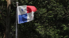 Panamanian Flag in Park Windy Stock Footage