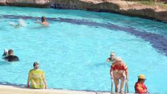 tourists spend time in the swimming pool - stock footage