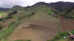 Aerial Shot of Panama Farms - stock footage