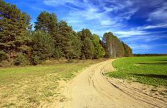 Autumn trees ,  Belarus Stock Photos