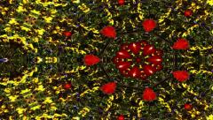 Kaleidoscopic patterns of nature - Video Background 1181 HD, 4K Stock Footage