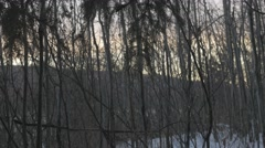 4k Tree Branches Dusk Sunset Icy River Snow Hills Forest - stock footage