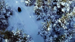 Aerial Video of Family Sliding in Nature Stock Footage