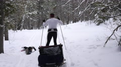 A family cross country skiing in the new snow Stock Footage