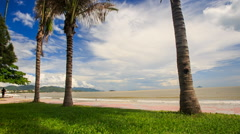 Tranquil Wave Surf on Sand Sea Beach through Palm Trunks Stock Footage