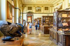 People Visit The Museum of Natural History - stock photo