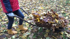 Woman carry cart of dry leaves and dump it accidentally on ground. Handheld. 4K Stock Footage