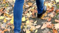 Detailed view of the legs that go over fallen leaves Stock Footage