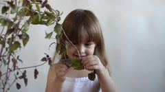 Girl tearing a basil leaf off - stock footage