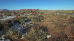 Horses and Drone Shadow in Monument Valley- Navajo Nation Stock Footage